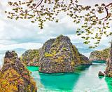 Coron lagoon
