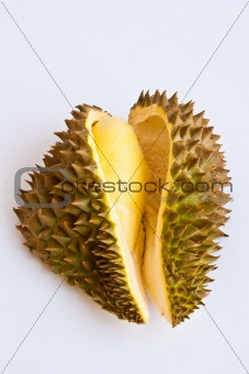 Close up of peeled durian isolated on white background.