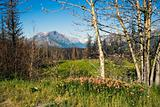 US Glacier National Park