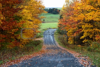 Country road on a cloudy autumn day