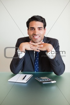 Portrait of an accountant posing