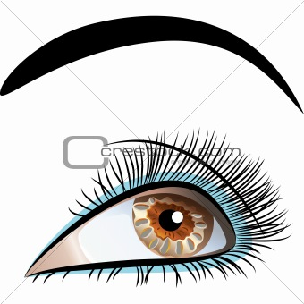 vector closeup of beautiful female eye