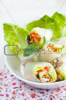 Rice paper springrolls