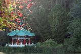 Chinese Pavilion at San Francisco Golden Gate Park