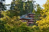 Pagodas in San Francisco Japanese Garden