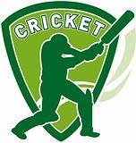 cricket player batsman batting shield