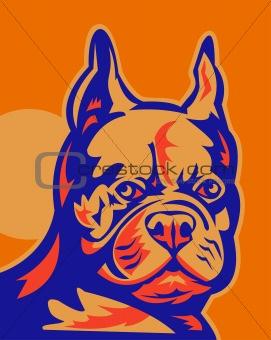 French Bulldog head portrait retro