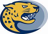jaguar head facing side