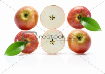 Slices of Gala Apple