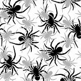 spiders pattern