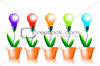 Growing energy light bulbs.