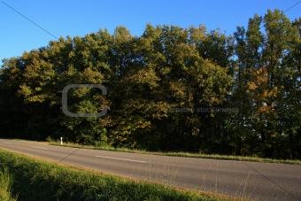 beautiful landscape in fall