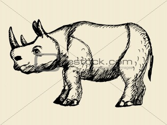 A hand drawn illustration of the rhinoceros