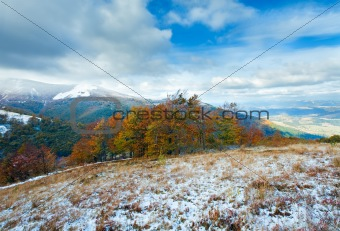 First winter snow and autumn colourful foliage on mountain