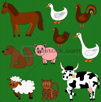 Cute farm animals