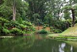 Botanic garden on Azores