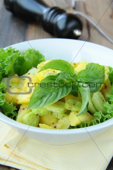 Potato salad with green and  cucumber