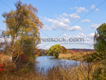 Autumn day on the bank of lake
