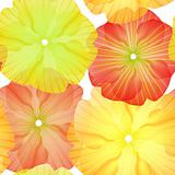 Seamless Primula Flowers 2(4).jpg