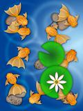 Fancy Goldfish Swimming in Pond Illustration
