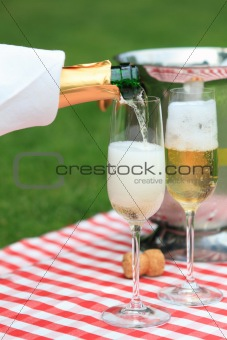 Champagne at a summer picnic