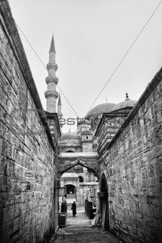 Istanbul Fine Arts