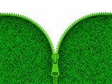 Zipped Grass