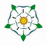 White rose of Yorkshire