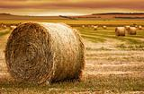 Hay Bale Farm