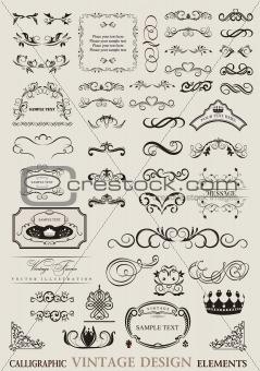 calligraphic design ornaments