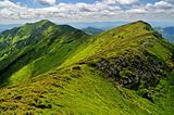 Rocky ridge in Marmaroski alps. Carpathians
