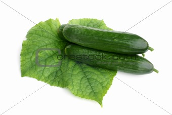Cucumbers with leaf