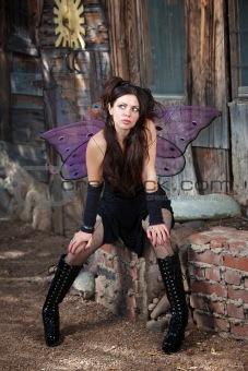Fairy Wondering