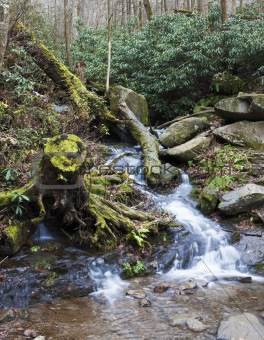 Smoky Mountains scenery
