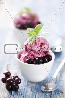 blackcurrant dessert