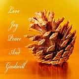 love, joy, peace and goodwill