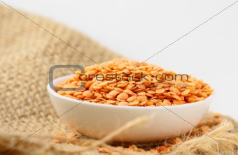Bowl of red lentils  on white background