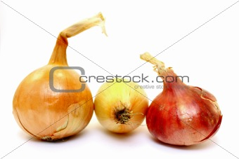 Beautiful onion on a white background