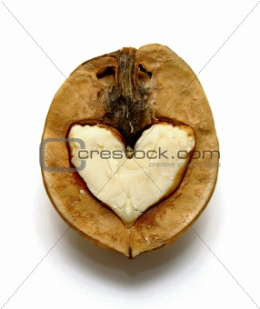 Beautiful nut with abstract heart for Valentine's Day