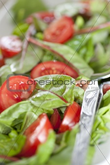 Close Up of salad