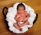 Cute baby asleep in basket