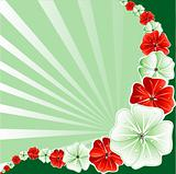 Floral Christmas Background 3