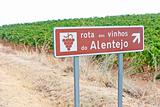 vineyars and wine route in Alentejo, Portugal