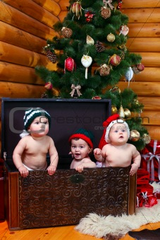 Three babies in xmas hats inside large chest