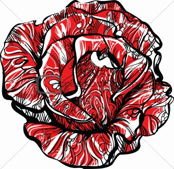 red rose with tatoo