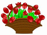 Basket of Red Tulips Flowers Illustration