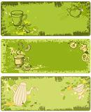 set of green tea banners