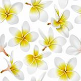 Tropical flowers (Lei) seamless pattern