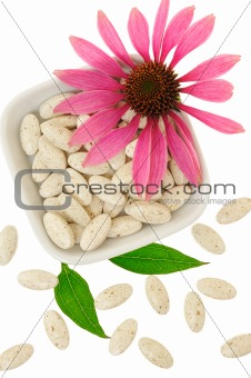 Echinacea purpurea extract pills, alternative medicine concept