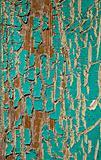Peeling Turquoise Paint